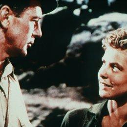 Wem die Stunde schlägt / Ingrid Bergman / Gary Cooper Poster