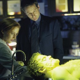 Akte X - Season 7 Collection / The X-Files / Gillian Anderson / David Duchovny