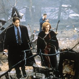 Akte X - Tempus Fugit / David Duchovny / Gillian Anderson / The X-Files