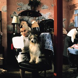 102 Dalmatiner / Glenn Close Poster
