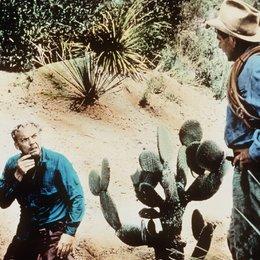 Totem / Glenn Ford / Arthur Kennedy Poster