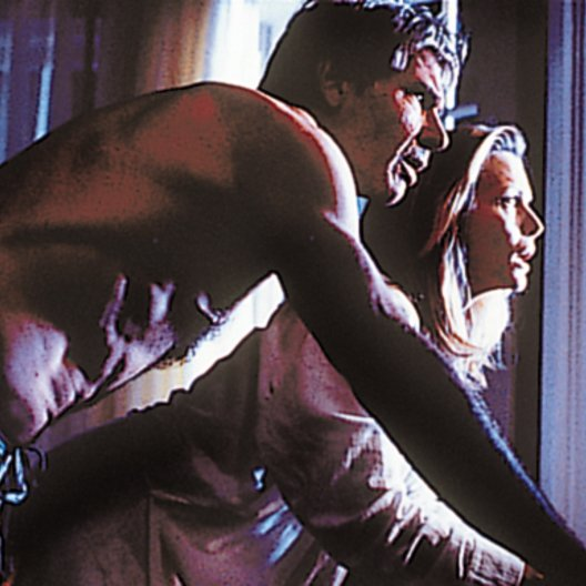 Schatten der Wahrheit / Harrison Ford Poster