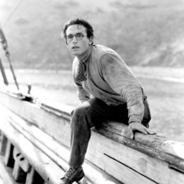 Harold Lloyd - The Collection / thekidbrother Poster