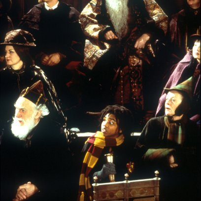 Harry Potter und der Stein der Weisen / Richard Harris Poster