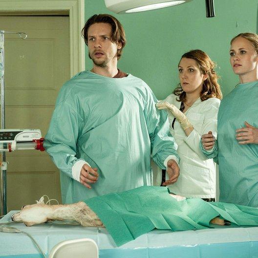 Doc meets Dorf (RTL) / Doc meets Dorf (1. Staffel, 8 Folgen) / Inez Bjørg David / Bert Tischendorf / Nikola Kastner Poster