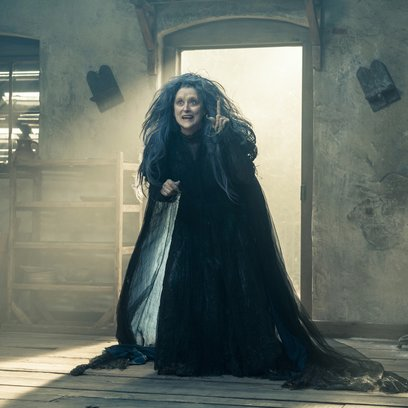 Into the Woods / Meryl Streep Poster