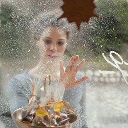 Als der Weihnachtsmann vom Himmel fiel / Jessica Schwarz Poster
