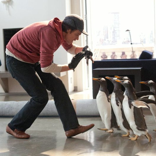 Mr. Poppers Pinguine / Mr. Popper's Penguins / Jim Carrey Poster