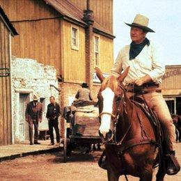 Chisum / John Wayne