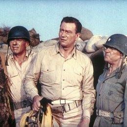Jagdgeschwader Wildkatze / John Wayne