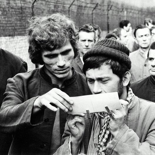 Verrohung des Franz Blum, Die / Jürgen Prochnow Poster