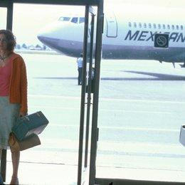 Mexican - Eine heiße Liebe / Julia Roberts / Flughafen Poster
