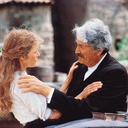 Old Gringo / Jane Fonda / Gregory Peck Poster