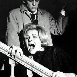 Geheimnis der gelben Narzissen, Das / Klaus Kinski