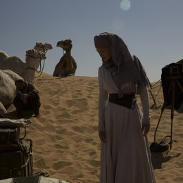 Königin der Wüste / Queen of the Desert / Nicole Kidman Poster