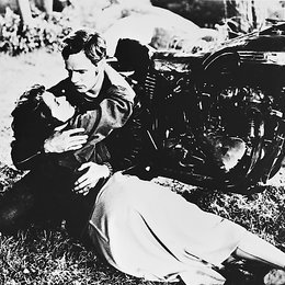 Wilde, Der / Marlon Brando
