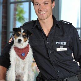 Da kommt Kalle (5. Staffel, 12 Folgen) (ZDF) / Max Woelky / Alexander Granzow Poster