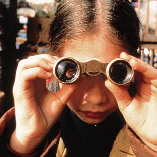 Harriet, die kleine Detektivin / Michelle Trachtenberg Poster
