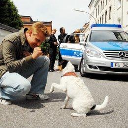 Da kommt Kalle (3. Staffel, 13 Folgen) (ZDF) / Mike Hoffmann Poster