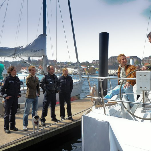 Da kommt Kalle (5. Staffel, 12 Folgen) (ZDF) / Sabine Kaack / Max Woelky / Marek Erhardt / Ben Braun / Mike Hoffmann Poster