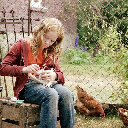 wilden Hühner, Die / Michelle von Treuberg Poster