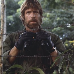 Missing in Action / Chuck Norris Poster
