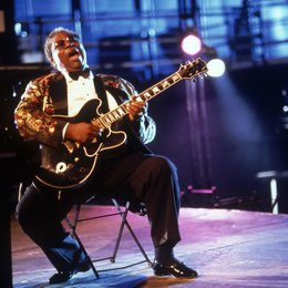 Mr. Bluesman / B. B. King Poster
