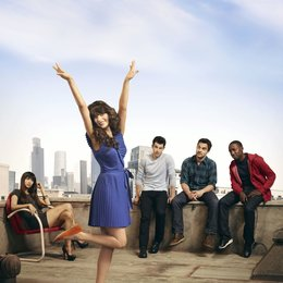 New Girl / Zooey Deschanel / Lamorne Morris / Max Greenfield / Jake M. Johnson / Hannah Simone Poster