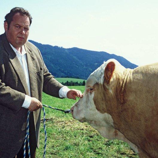 Bulle von Tölz, Der / Der Bulle von Tölz - Staffel 11 + 12 / Ottfried Fischer Poster