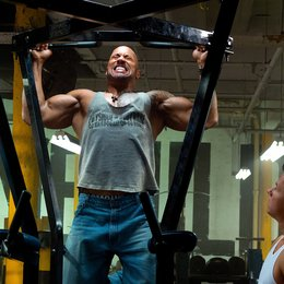 Pain & Gain / Dwayne Johnson / Mark Wahlberg