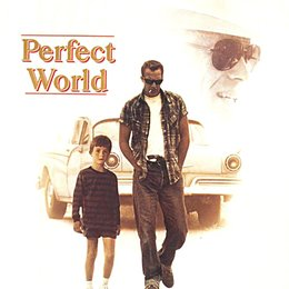 Perfect World Poster