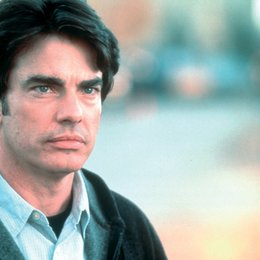 Protection / Peter Gallagher Poster