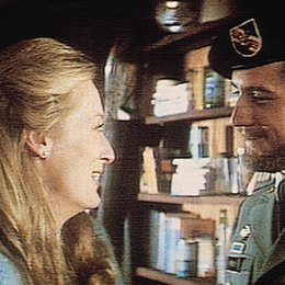 Die durch die Hölle gehen / Meryl Streep / Robert de Niro Poster
