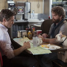 Stichtag / Due Date / Robert Downey Jr. / Zach Galifianakis