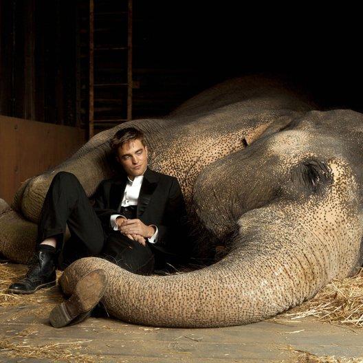 Wasser für die Elefanten / Robert Pattinson Poster
