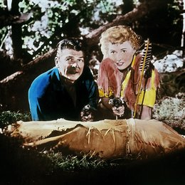 Königin der Berge / Barbara Stanwyck / Ronald Reagan Poster