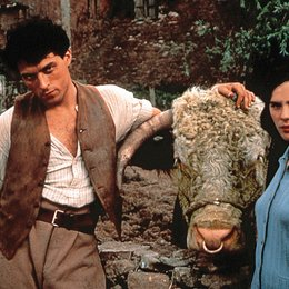 Cold Comfort Farm / Rufus Sewell / Kate Beckinsale Poster