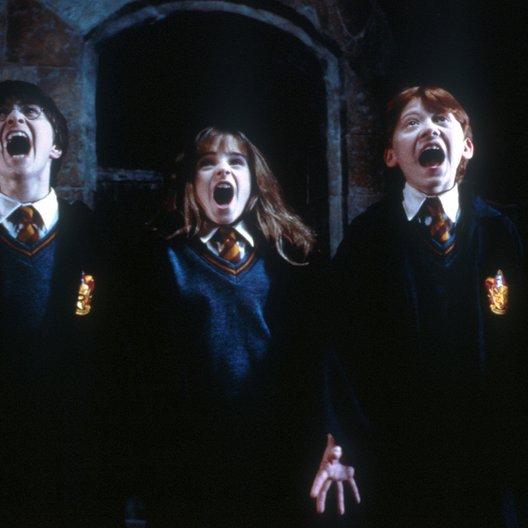 Harry Potter und der Stein der Weisen / Daniel Radcliffe / Fiona Shaw / Harry Melling / Richard Griffiths / Harry Potter 1-3 Poster