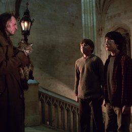 """Harry Potter und die Kammer des Schreckens / David Bradley """"Argus Filch"""" / Rupert Grint """"Ron Weasley"""" / Daniel Radcliffe """"Harry Potter"""" Poster"""