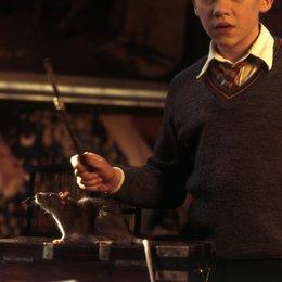 """Harry Potter und die Kammer des Schreckens / Rupert Grint """"Ron Weasley"""" / Daniel Radcliffe """"Harry Potter"""" / Matthew Lewis / Alfred Enoch / Oliver Phelps / James Phelbs / Sean Biggerstaff / Devon Murray / Hugh Mitchell / Emma Watson Poster"""