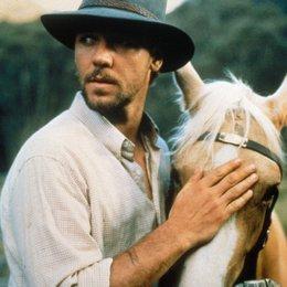 silberne Hengst - König der Wildpferde, Der / Russell Crowe Poster