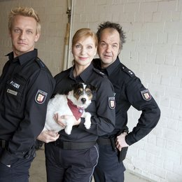 Da kommt Kalle (4. Staffel, 20 Folgen) (ZDF) / Marek Erhardt Poster