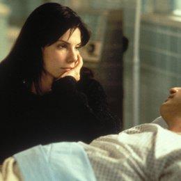 Während Du schliefst - Liebe auf den 2. Blick / Sandra Bullock / Peter Gallagher Poster
