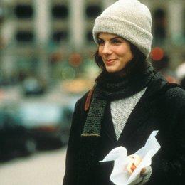 Während Du schliefst - Liebe auf den 2. Blick / Sandra Bullock Poster