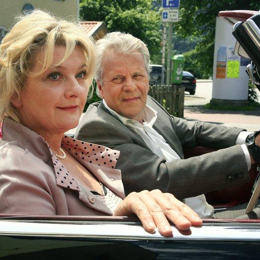 Utta Danella: Wer küsst den Doc? (ARD) / Peter Sattmann / Saskia Vester Poster