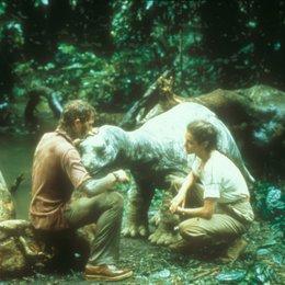 Baby - Das Geheimnis einer verlorenen Legende / William Katt / Sean Young Poster