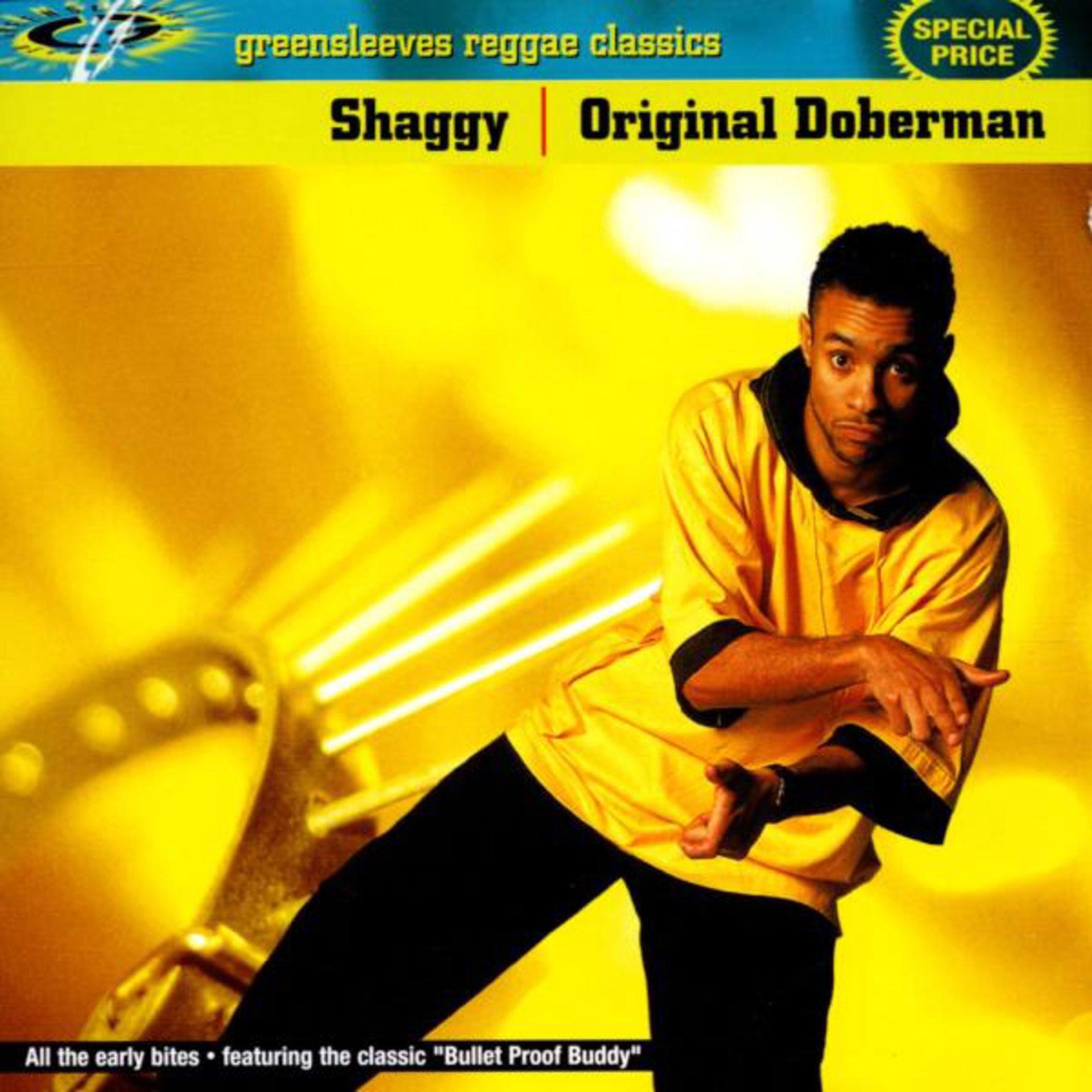 Shaggy - Ready Fi De Ride