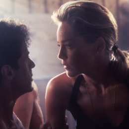 Specialist, The / Sylvester Stallone / Sharon Stone Poster