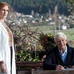 Bergdoktor: In der Fremde, Der (ZDF / ORF) / Nicole R. Beutler / Siegfried Rauch Poster