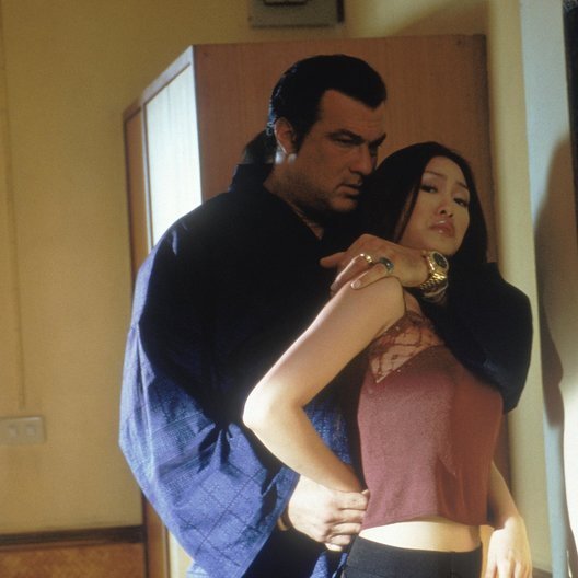 Belly of the Beast, The / Steven Seagal